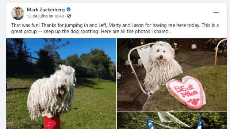 Mark Zuckerberg posta fotos de cachorro depois de ter infringido regras de grupo no Facebook - Reprodução - Reprodução