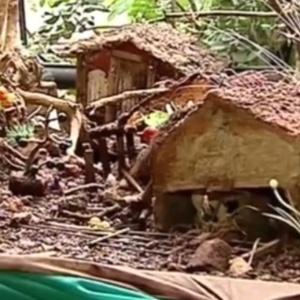 Rompimento da barragem em Mariana (MG) provocou um rastro de destruição até o Espírito Santo