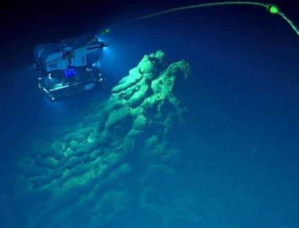 Imagens feitas por veículos robóticos usados para explorar a Fossa das Marianas, área mais profunda do planeta, permitiram a descoberta - BILL CHADWICK-NOAA