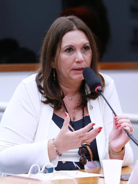 A deputada federal Bia Kicis (PSL-DF): cotada para assumir principal comissão da Câmara  - Michel Jesus/Câmara dos Deputados
