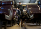 Treino de cães policiais inclui salto em altura e preparação para estresse - Mike Segar/Reuters