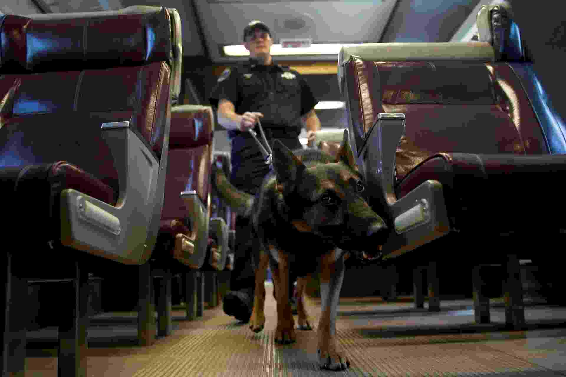 Após 11 de setembro, cresce demanda por cães policiais - Mike Segar/Reuters