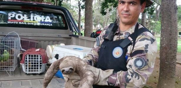 Intenso contato entre pessoas e animais no DF mantém policiais do batalhão ambiental ocupados