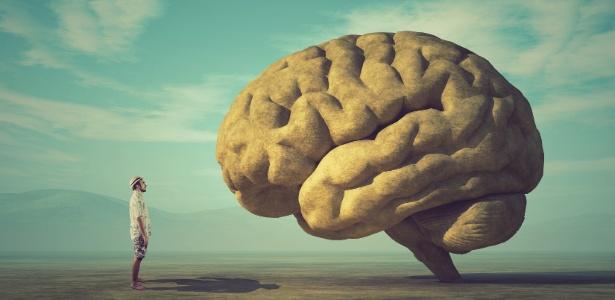 Para a ciência, inteligência (também) é genética e aumenta a cada geração