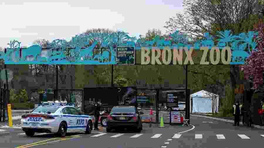 O Zoológico do Bronx, em Nova York, disse que reconhece o racismo sistêmico e se compromete a combatê-lo - Getty Images