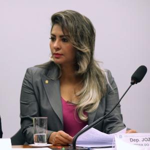 Deputada Jozi Rocha (PTB-AP) em audiência na Câmara