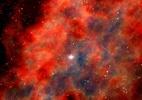 Qual é a relação dos anéis das árvores com as estrelas supernovas? (Foto: Science Photo Library)