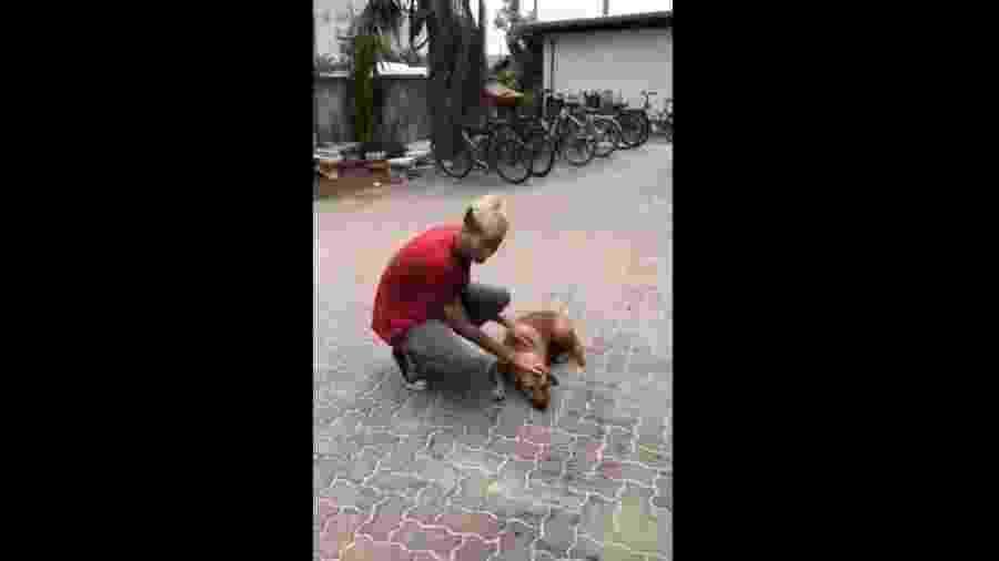 Garoto encontra e brinca com cachorro que viralizou no Instagram  - Reprodução