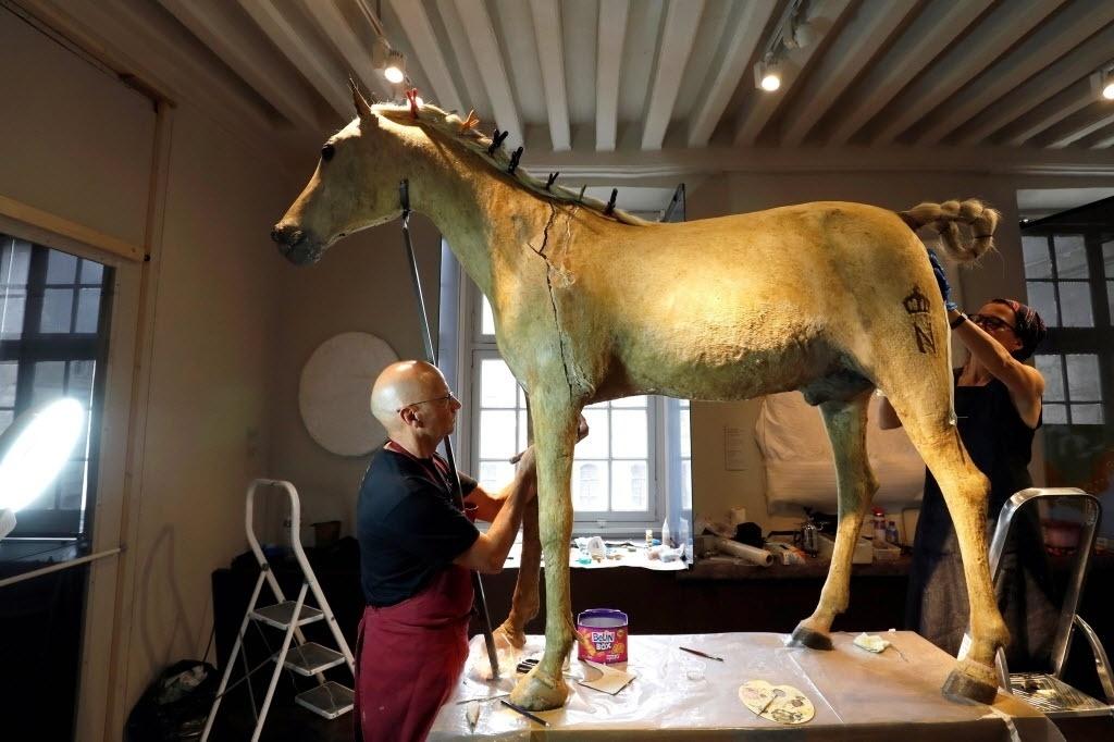 27.jun.2016 ? Duas pessoas trabalham na restauração do último cavalo usado por Napoleão Bonaparte no Museu do Exército, em Paris. Uma marca no cavalo com a letra