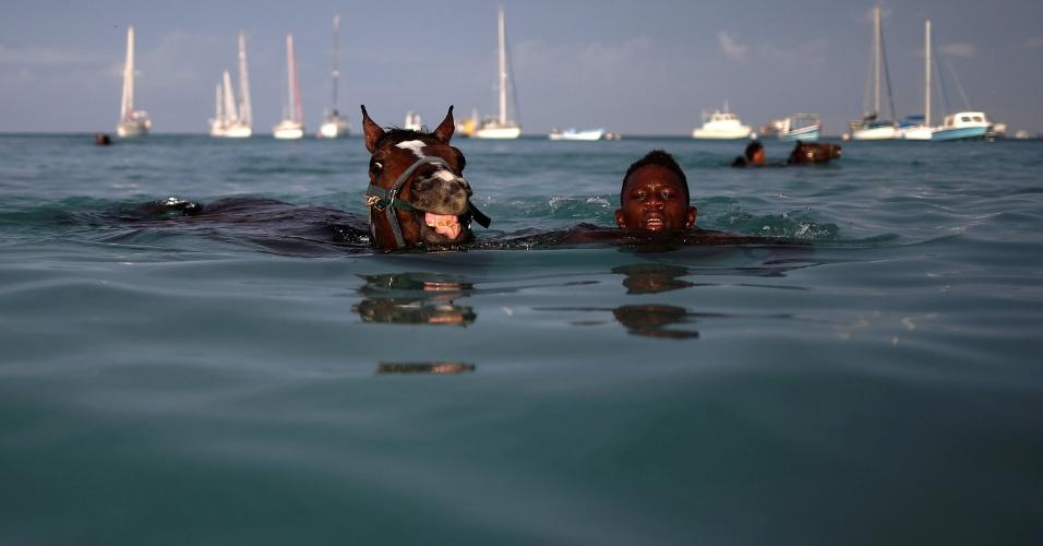 1.dez.2016 - Treinador nada com cavalo do haras Garrison Savannah no mar do Cararibe perto de Bridgetown, em Barbados