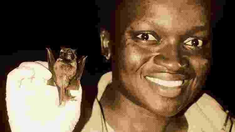 Iroro Tanshi atribui o medo de morcegos aos nossos equívocos, porque sua natureza noturna os torna difíceis de observar - Chidiogo Okoye/SMACON/BBC - Chidiogo Okoye/SMACON/BBC