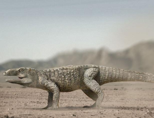 Pesquisadores da UFRGS e do Vale do São Francisco (Univasf) descobriram uma espécie de réptil que viveu há 237 milhões de anos