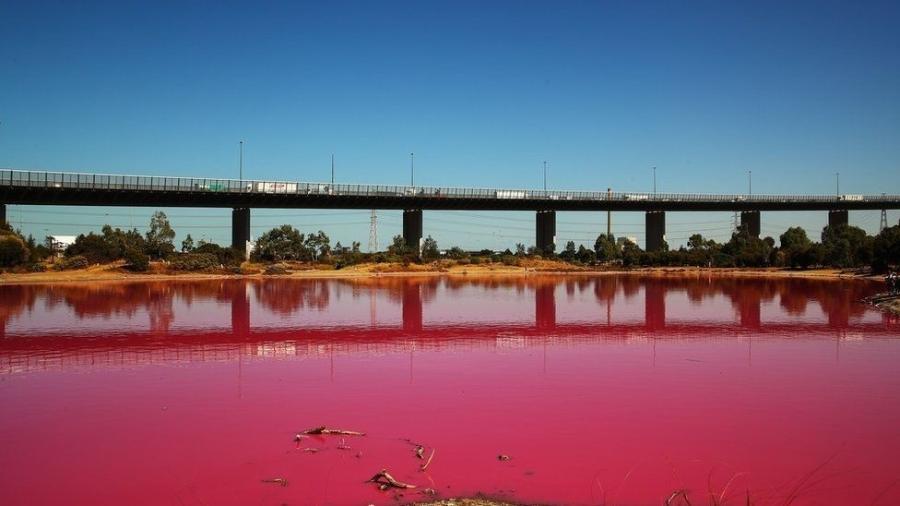 Este lago artificial de água salgada no Parque Westgate, em Melbourne, ficou rosa nas últimas semanas - Getty Images/BBC