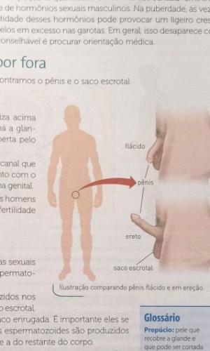 Livro didático gerou revolta de pais em Rondônia por usar ilustrações de órgãos sexuais