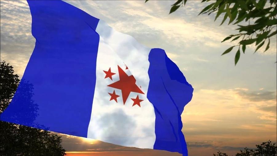 Bandeira da Revolta de Búzios - Imagem Ilustrativa