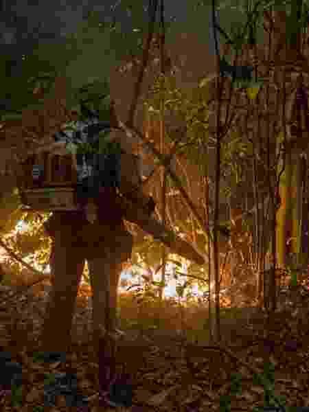 Incêndios no Pantanal atingiram grandes proporções - EPA/ROGERIO FLORENTINO