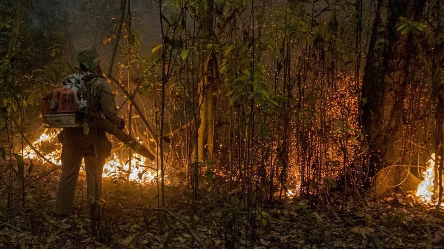 Incêndios no Pantanal atingiram grandes proporções e já consumiram quase 3 milhões de hectares do bioma no Brasil - EPA/ROGERIO FLORENTINO