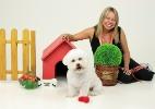 Conheça a Pet Model Brasil, que agencia animais de estimação - Divulgação
