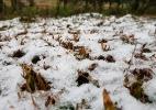 Inverno 2018 - Imagens Mycchel Hudsonn Legnaghi/São Joaquim Online