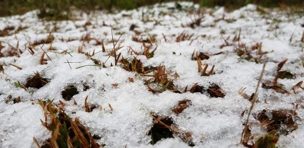 10.jun.2018 - Com a queda de temperaturas em todo o país, cidades da Serra Catarinense já registraram neve. Em Urubici, a vegetação foi tomada por cristais de gelo