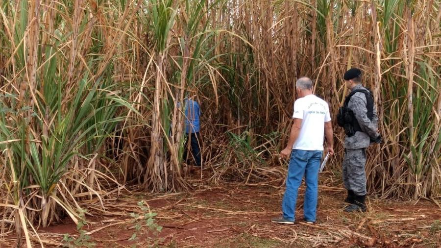 Local onde o corpo de Carolaine Espíndola foi encontrado em uma reserva no MS - Divulgação/Polícia Civil
