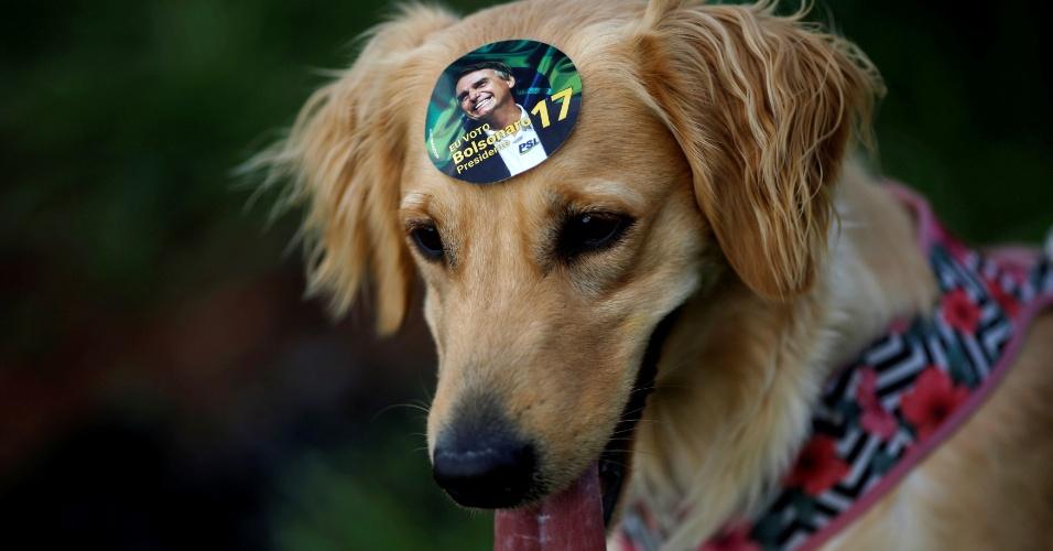 Cachorro usa adesivo do candidato Jair Bolsonaro (PSL) durante manifestação em Brasília