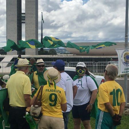 Manifestante usa máscora com as cores da bandeira do Brasil - Felipe Pereira