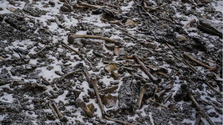 Local guarda algo entre 600 e 800 ossadas - Himadri Sinha Roy - Himadri Sinha Roy