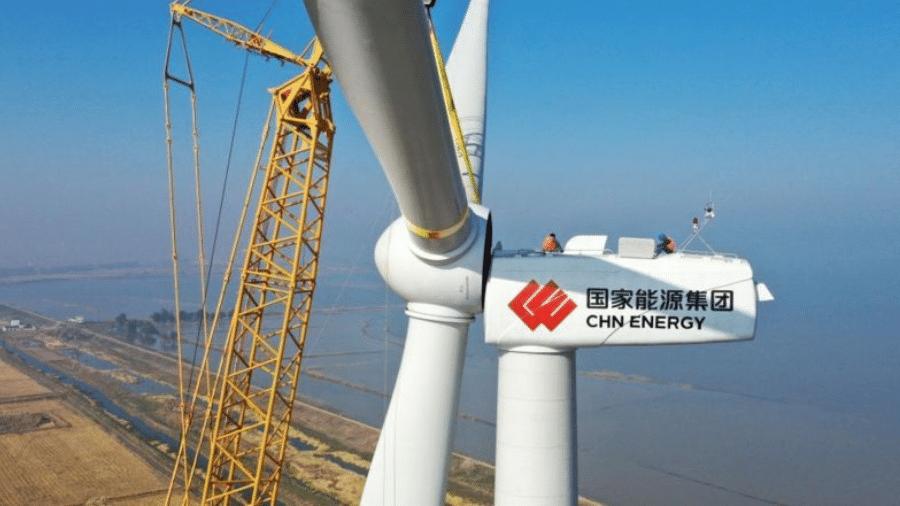 O boom de investidores chineses em 2019 e 2020 desencadeou o caos na extração de Pau-de-balsa no Equador - Getty Images
