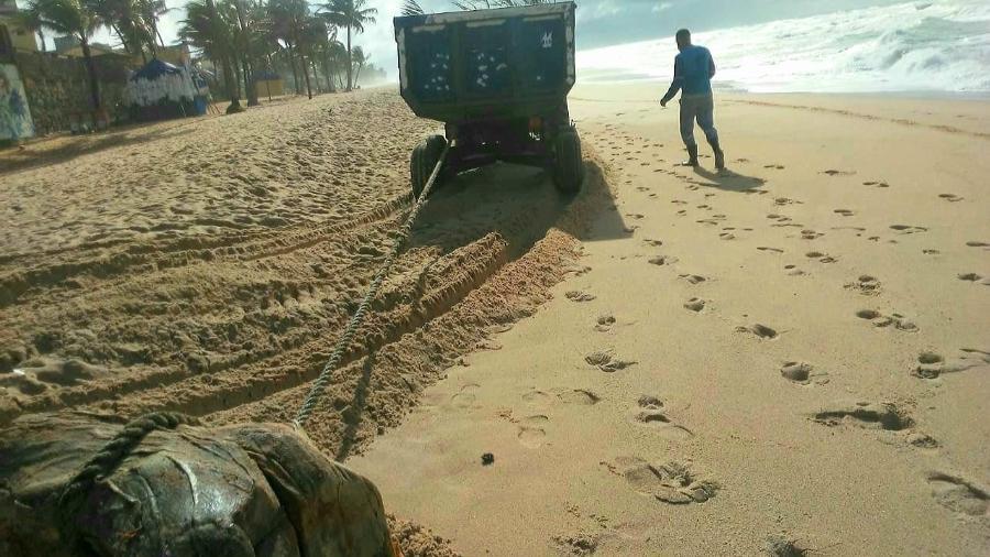 Fardo é retirado de praia de Salvador: 10 já apareceram no litoral da capital baiana - Priscila Santos/Prefeitura de Salvador