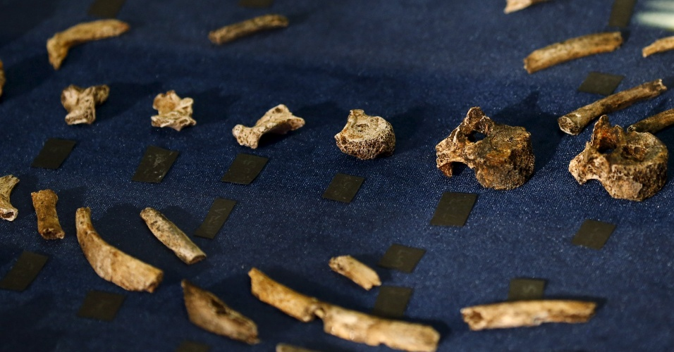 """10.set.2015 - Os fósseis que fazem parte do esqueleto do 'Homo Naledi' foram encontrados em uma caverna profunda de difícil acesso, perto de Johannesburgo (África do Sul), na área arqueológica conhecida como """"Berço da Humanidade"""", que é considerada patrimônio mundial pela Unesco"""