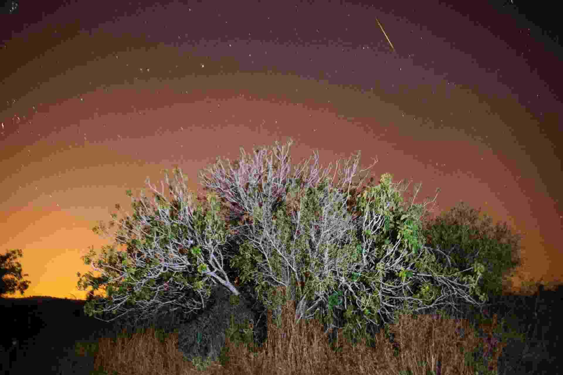 12.ago.2016 - Chuva de meteoros Perseidas é registrada no ceú de Luzit, na região central de Israel. O fenômeno, que ocorre anualmente no mês de agosto, teve seu ápice na madrugada desta quinta para sexta-feira (12), segundo a Nasa. O fenômeno é muito mais intenso no hemisfério Norte. As Perseidas têm este nome porque os meteoros parecem sair da constelação de Perseus - Menahem Kahana/AFP