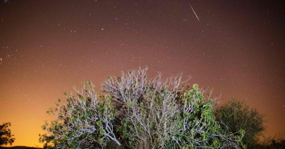12.ago.2016 - Chuva de meteoros Perseidas é registrada no ceú de Luzit, na região central de Israel. O fenômeno, que ocorre anualmente no mês de agosto, teve seu ápice na madrugada desta quinta para sexta-feira (12), segundo a Nasa. O fenômeno é muito mais intenso no hemisfério Norte. As Perseidas têm este nome porque os meteoros parecem sair da constelação de Perseus