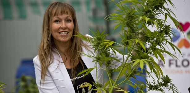 A presidente da Daya Foundation, Ana Maria Gazmuri, com uma planta de cannabis - Martin Bernetti/AFP