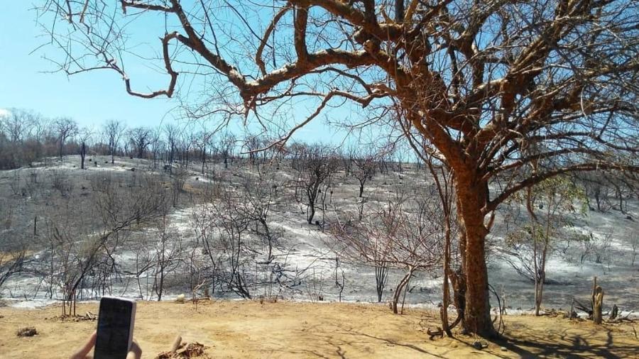 Incêndio vem consumindo a Serra da Capivara, no Piauí - Reprodução/Instagram/Prefeitura de São Raimundo Nonato