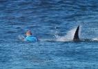 Tubarão aparece de novo em Jeffreys Bay e interrompe etapa da África do Sul - WSL/AFP