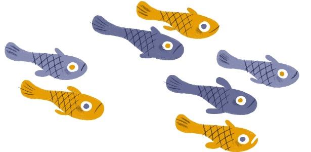 Os peixes esgana-gato podem distinguir seis animais de sete, ou 18 de 21