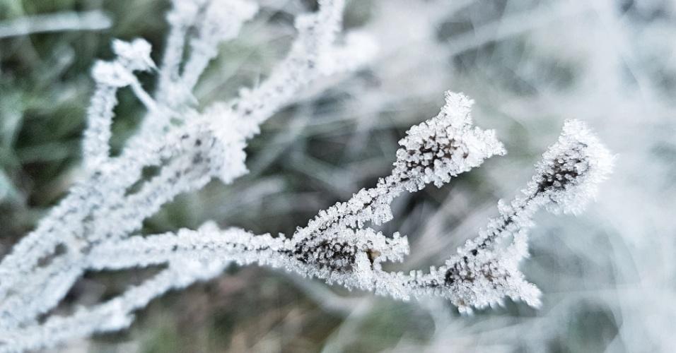 7.jun.2018 - Com a temperatura em -1,5ºC, a cidade de São Joaquim (SC) amanheceu coberta de gelo