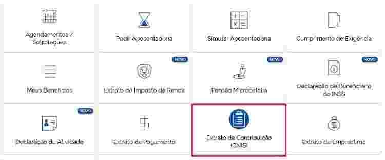 Cnis - Reprodução/Meu INSS - Reprodução/Meu INSS