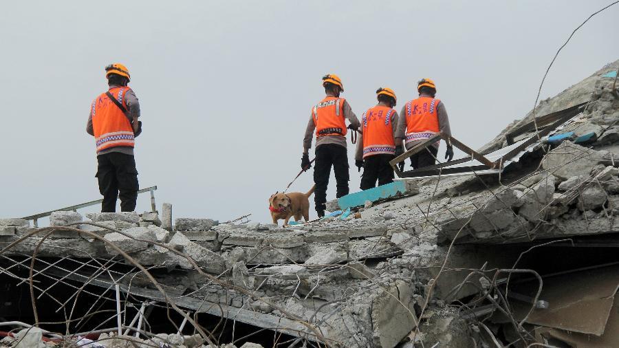 Autoridades indonésias e um cão farejador inspecionam um prédio de hospital que desabou após terremoto na província de Sulawesi Ocidental - Akbar Tado/Antara Foto via Reuters