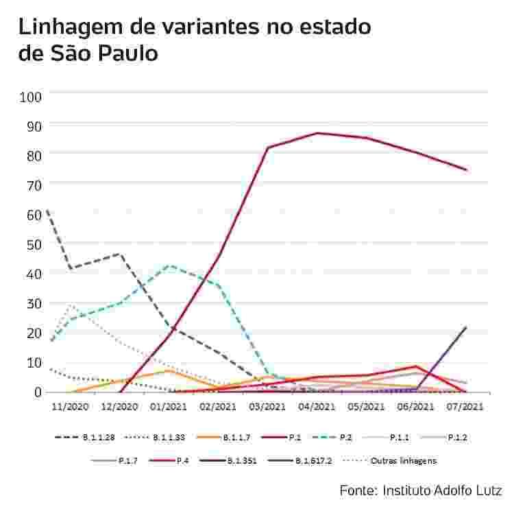 Variantes no estado de São Paulo - Reprodução/IALutz - Reprodução/IALutz