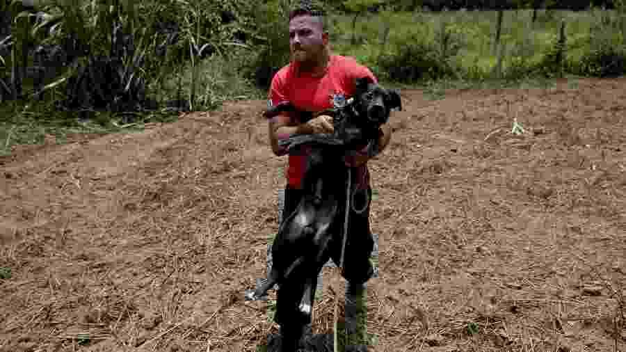 Cachorro é resgatado pelo bombeiro Leoncio Valverdes nas proximidades da área onde ficava a pousada Nova Estância, em Brumadinho (MG), atingida pelo rompimento de uma barragem da mineradora Vale - Pedro Ladeira/Folhapress
