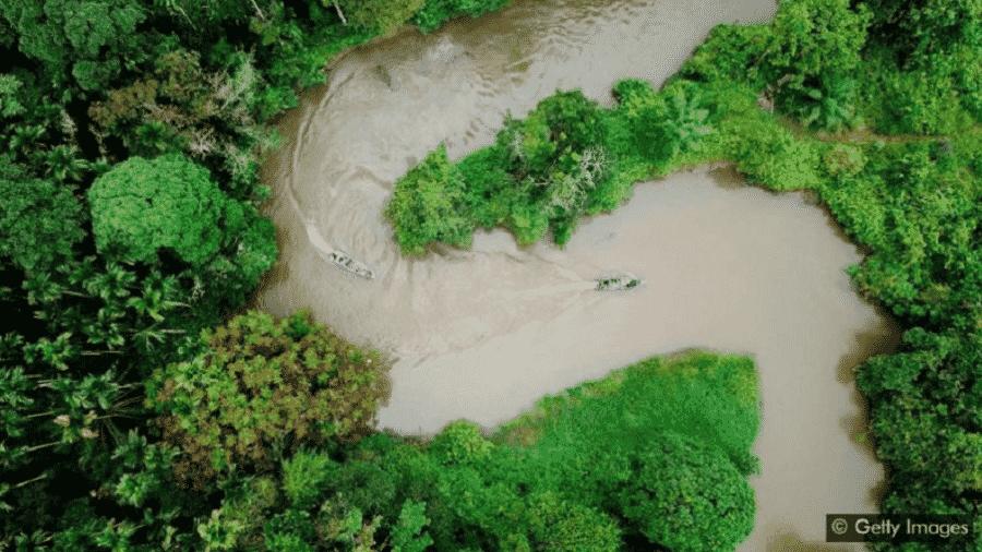 Preservar grandes extensões de terra pode ajudar a estabilizar ecossistemas vitais - Getty Images