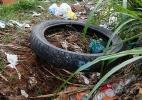 Prefeitura de SP vai cobrar em dobro por limpeza de terreno com Aedes (Foto: Joel Silva/Folhapress)