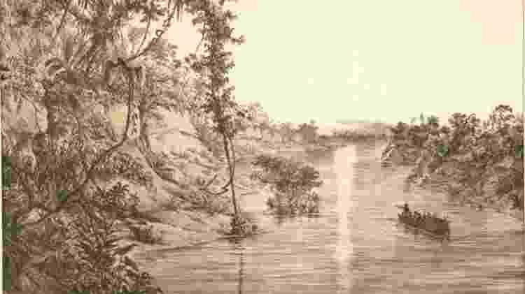 Gravura de 1847 retrata o Rio Japurá, Província do Rio Negro, na época de águas baixas - Divulgação/Editora Capivara/BBC - Divulgação/Editora Capivara/BBC