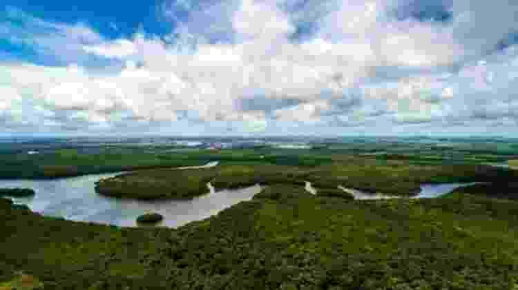 A Floresta Amazônica é questão central no debate ecológico internacional - Getty Images/BBC