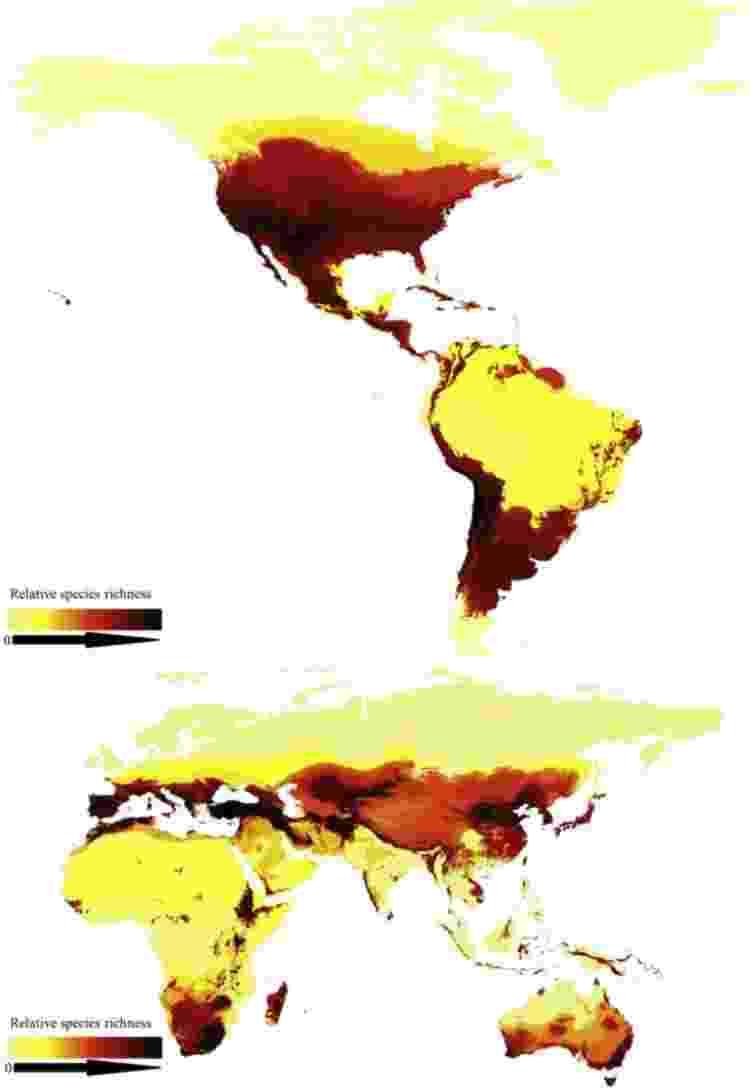 As revelações do primeiro mapa global de abelhas  - Current Biology - Current Biology