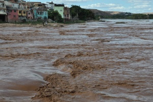 Casos de febre amarela em MG podem ter relação com a tragédia de Mariana (Foto: Antônio Cota/Diário do Rio Doce)
