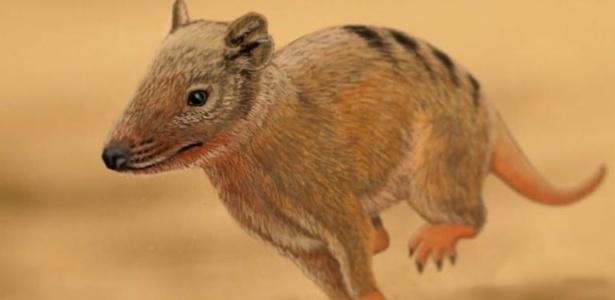 Pequeno mamífero deixa pegadas Brasilichnium enquanto galopa em duna do deserto Botucatu há 140 milhões de anos