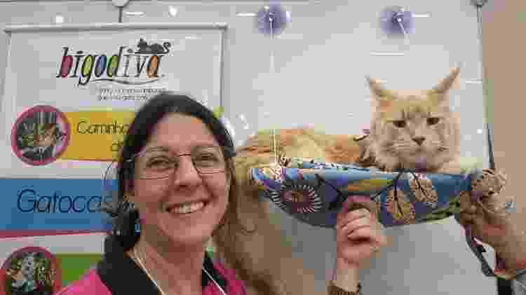 Andrea Cosentino, 45, criou a Bigodiva, que produz camas suspensas para gatos - Arquivo pessoal - Arquivo pessoal